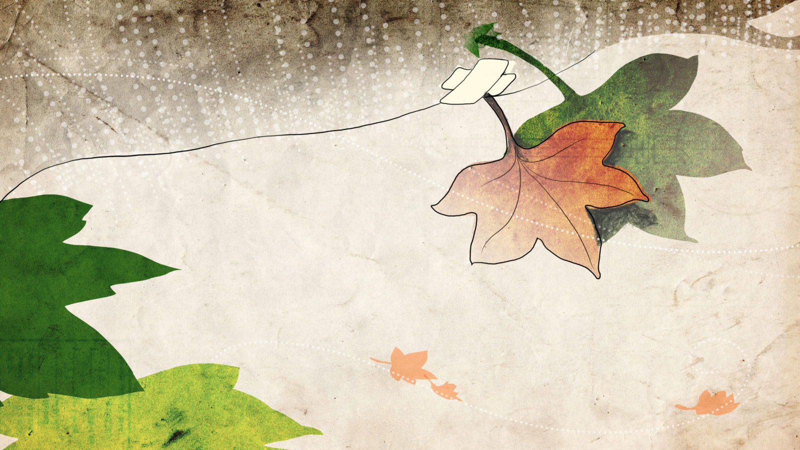 03_endnotes_leaves-1600x900